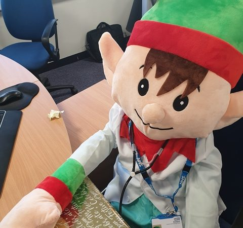Harry the Health Elf