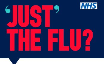 Just the Flu poster